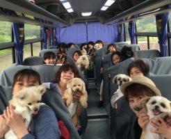 ペットと一緒に行けるバスツアー旅行
